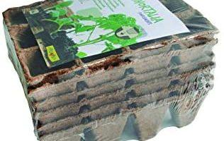 Bandejas Biodegradables Semilleros